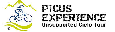 Logo picus experience