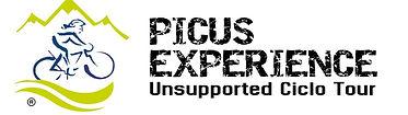 picus-experience-logo-retina.jpg