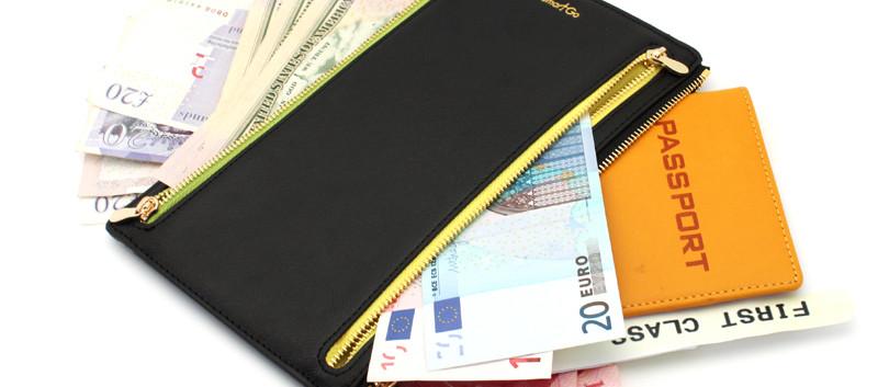 SmartGo MONIEA Curreny Organizer