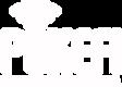 Pokefi Logo White lr.png