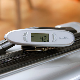 SmartGo Smart Scale with Ruler