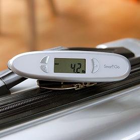 SmartGo Smart Scale with Ruler
