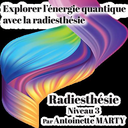 affiche carrée radiesthésie niveau3.pn