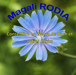Magali Rodia