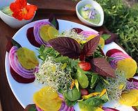 salade de betteraves.jpg
