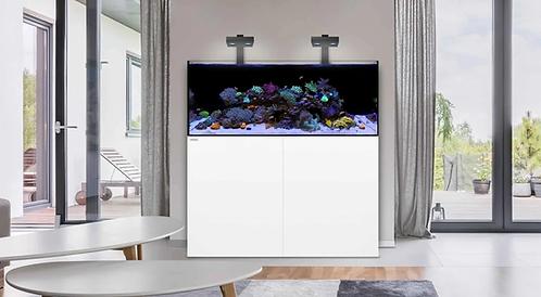 Waterbox Reef 100.3