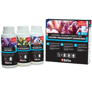 Foundation supplements complete starter pack