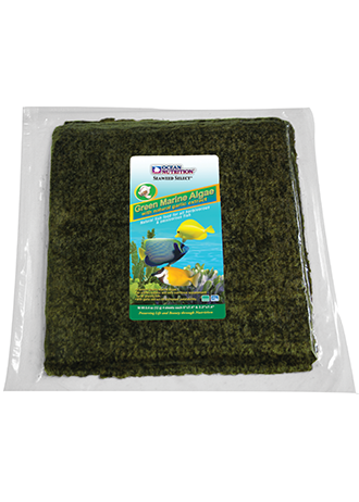 Green Marine Algae 150g