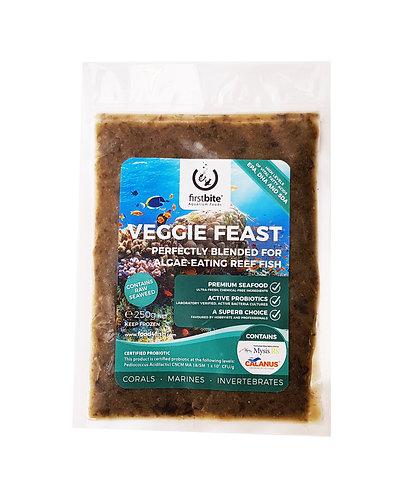 Firstbite Veggie feast