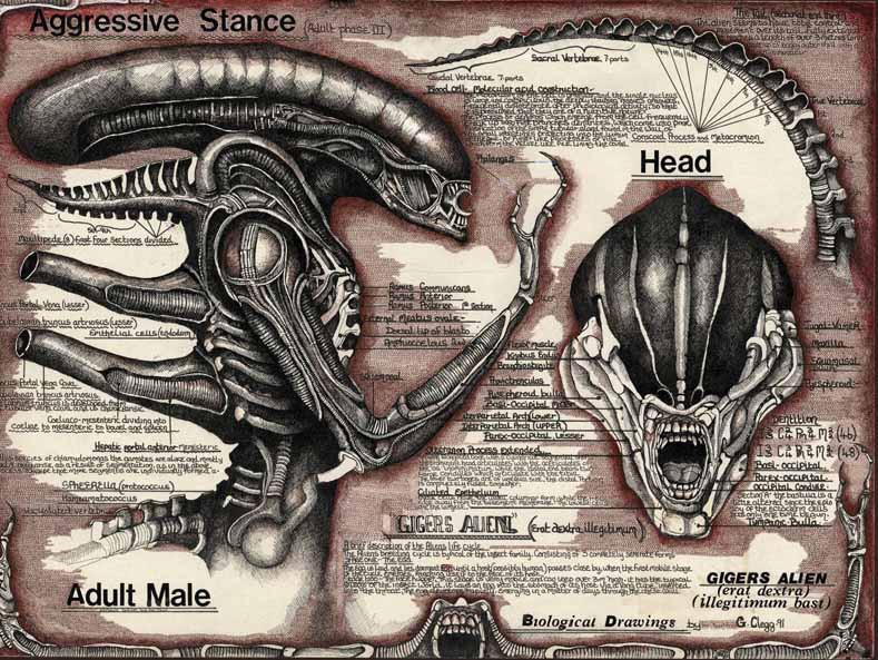 Alien log