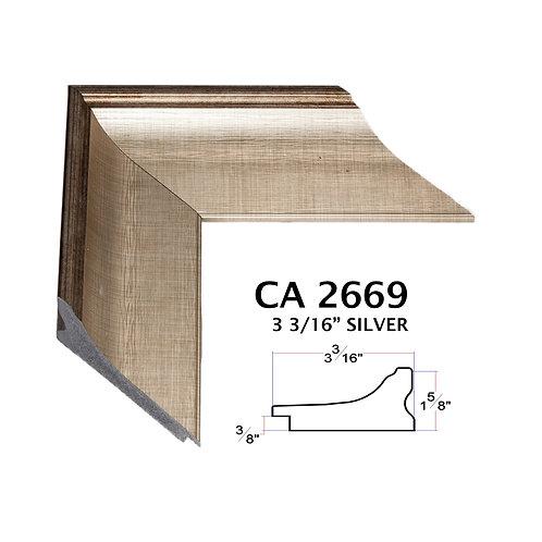 CA2669