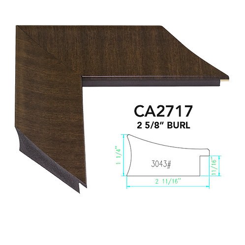 CA2717