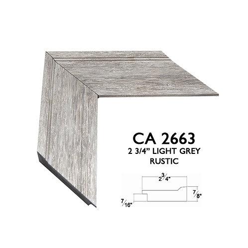 CA2663