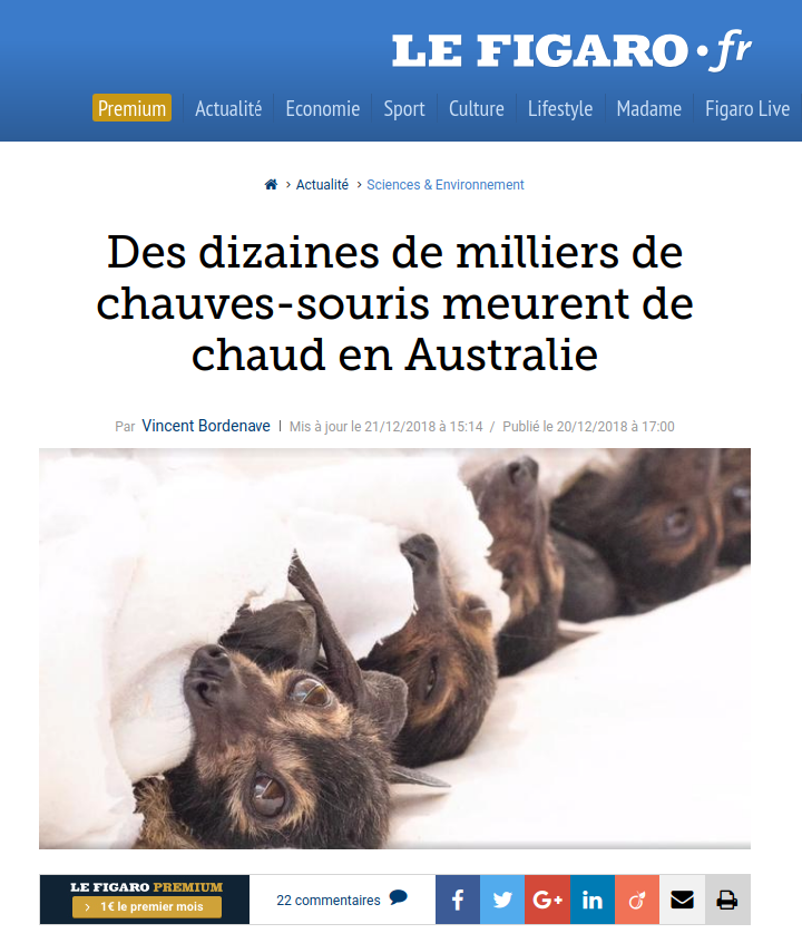 News in Le Figaro