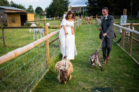 cottam-wedding_351.jpg