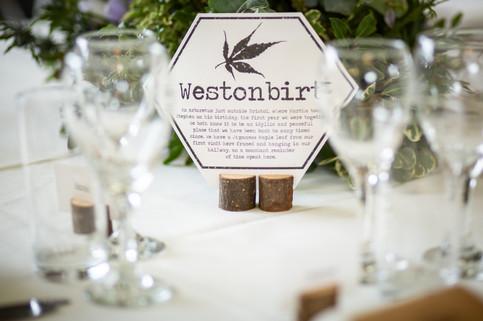 cottam-wedding_326.jpg