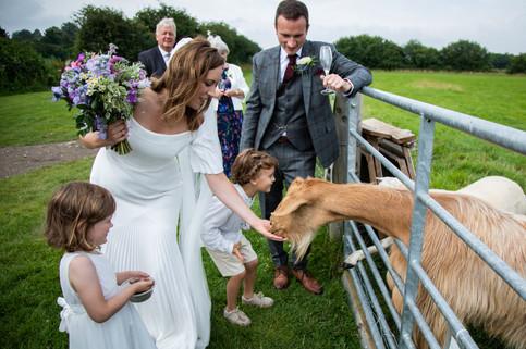 cottam-wedding_223.jpg
