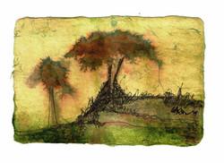 Trees - Postcards