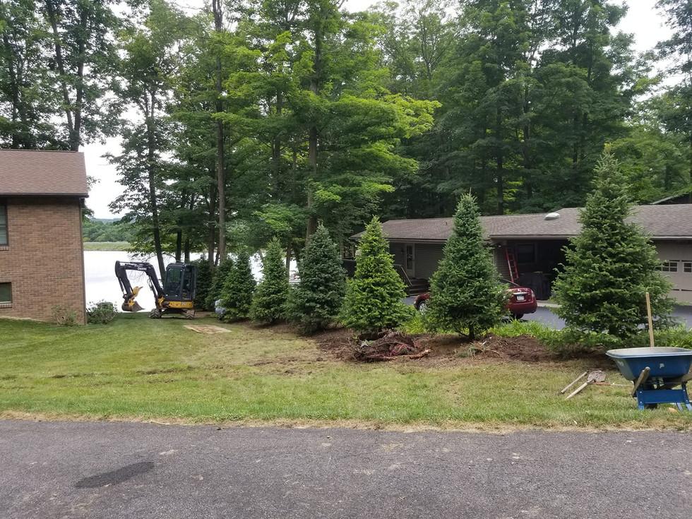 tree line install
