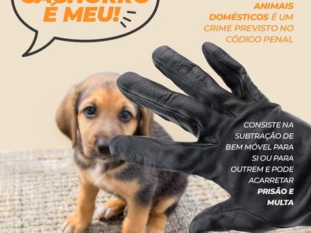 Roubar animais é CRIME! Soube de algum caso? Denúcie!