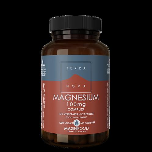 Magnesium 100mg 100 kapslar