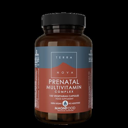 Prenatal Multivitamin Complex 100k