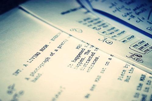 Script Doctoring - Longa-Metragem