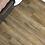 Thumbnail: New Standard II R004 - Bay Of Plenty