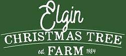 Elgin Christmas Logo.jpeg
