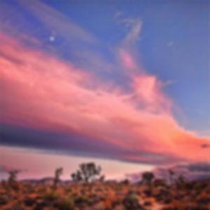 Pink sky desert.jpg