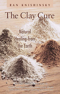 the Clay cure book.jpg