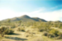 Yucca Valley Desert.jpg