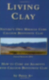 Living Clay book.jpg