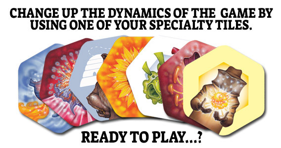 Game-Play-Image-6.jpg