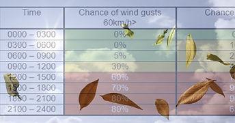 Winds.jpg