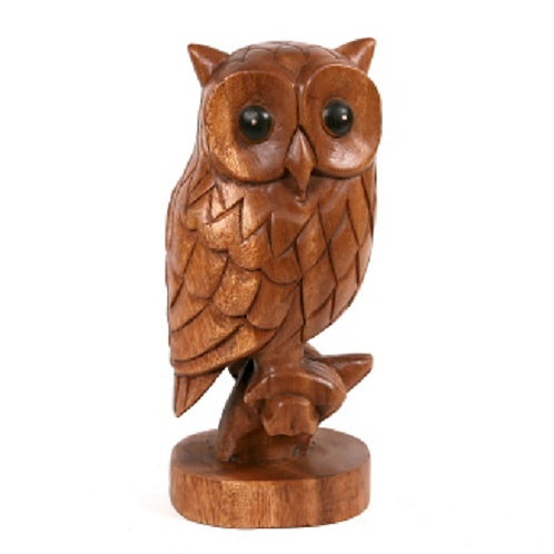 Wooden Owl on branch carving