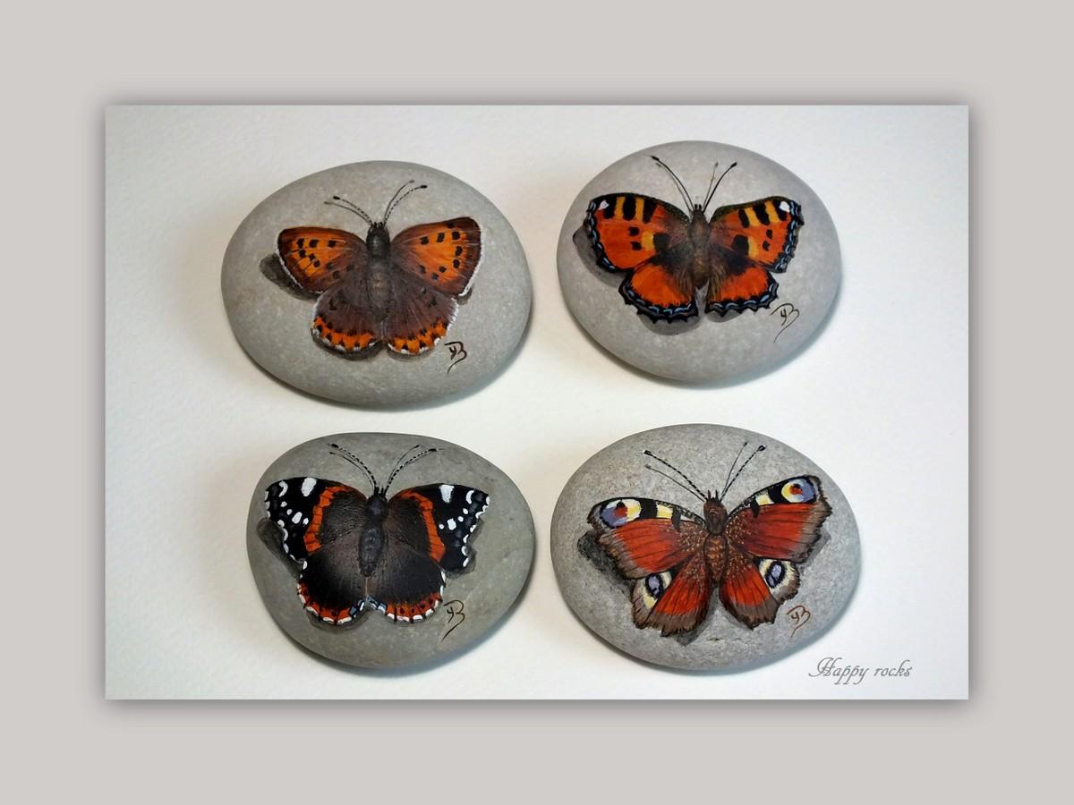 522-papillons_25805992573_o