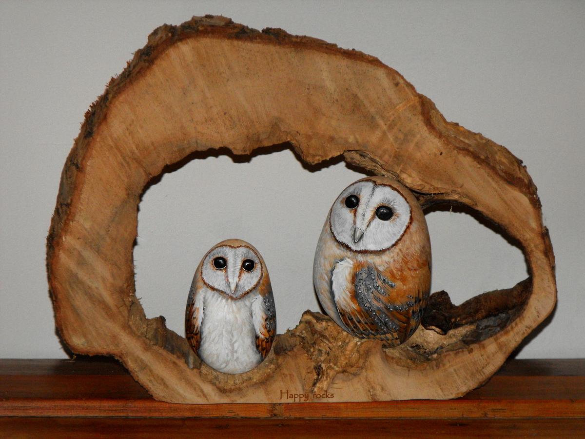 270-barn-owl---chouette-effraie_8073195890_o