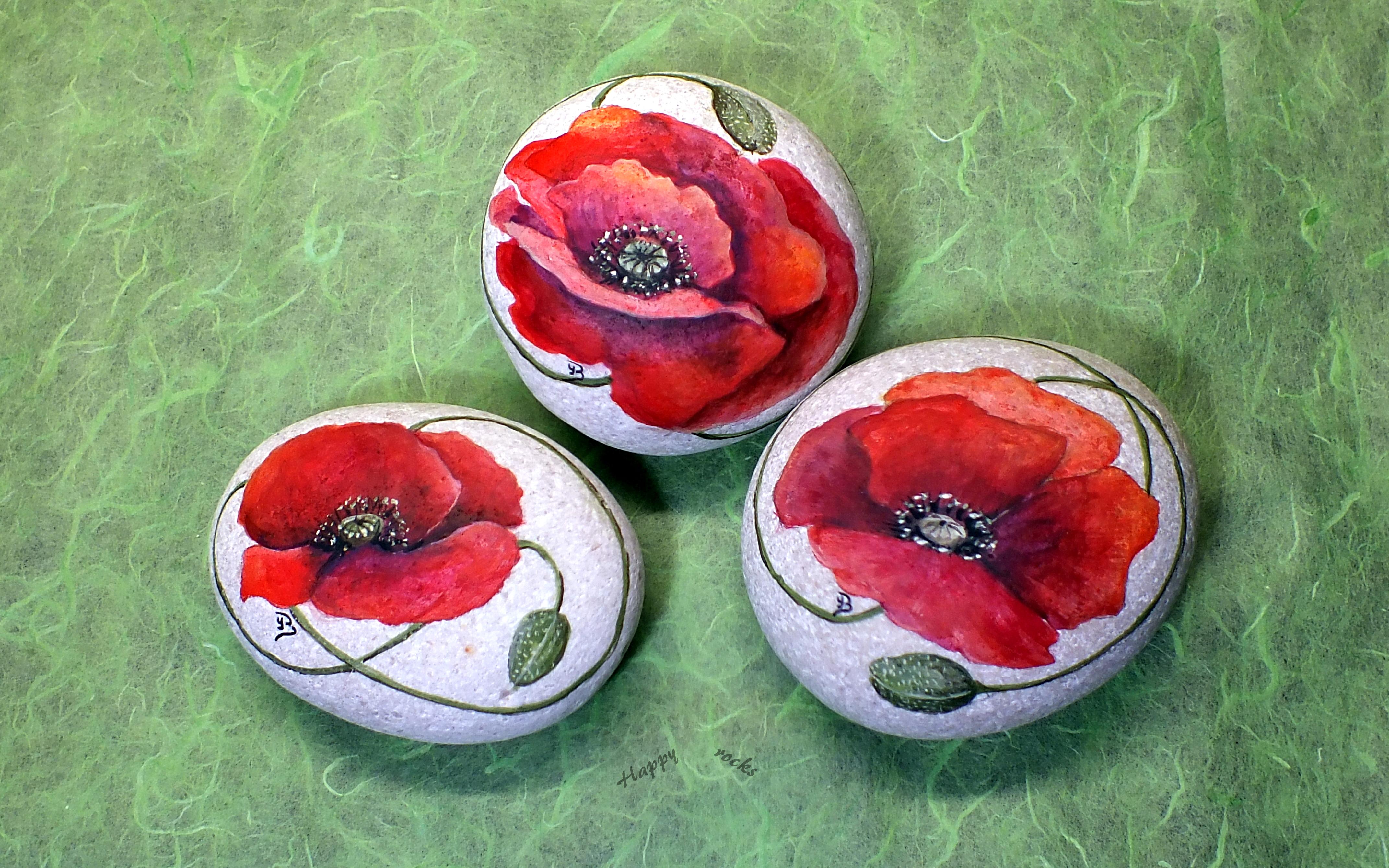 Coquelicots - poppies