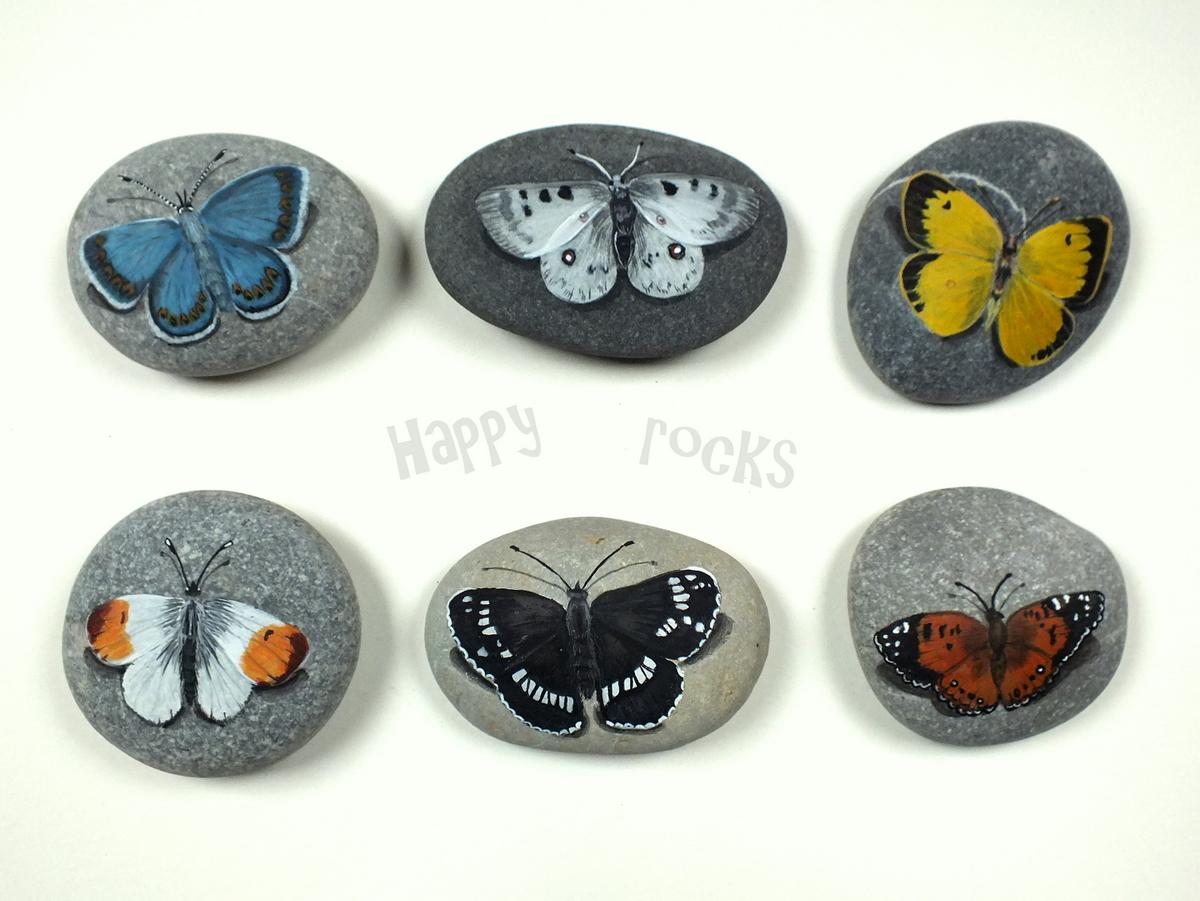 319-papillons_8763052211_o