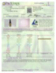 7.3.19_WT_Full_Maximum-page1.jpg