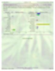 7.3.19_WT_Iso_Regular-page2.jpg