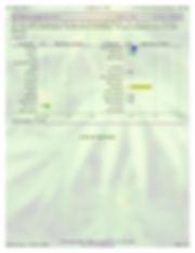 7.3.19_WT_Full_Maximum-page2.jpg