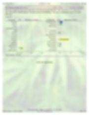7.3.19_WT_Iso_Maximum-page2.jpg