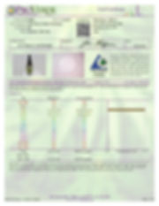 7.3.19_WT_Iso_Maximum-page1.jpg