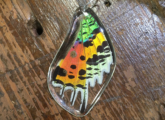 Rainbow butterfly wing pendant