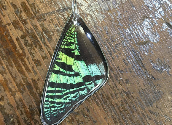 Electric green butterfly wing pendant