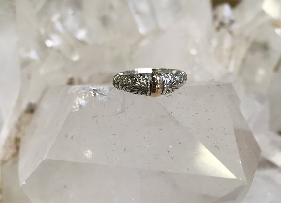 Silver with gold accents band