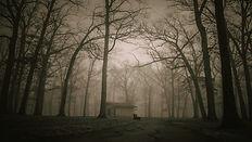 Free Dark Horror Music