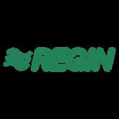 regin-logo-png-transparent.png